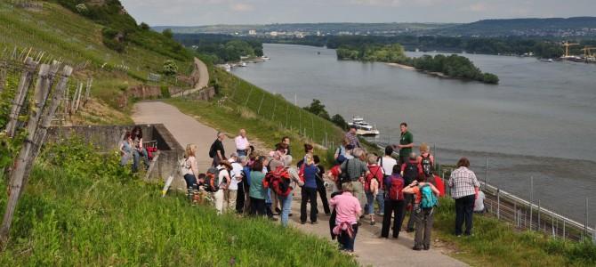Mords-Denkmäler Rüdesheim